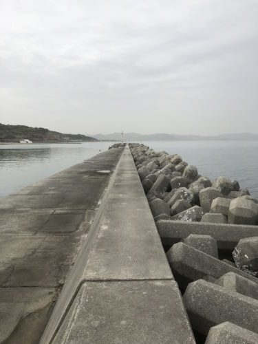 鳥飼漁港南側
