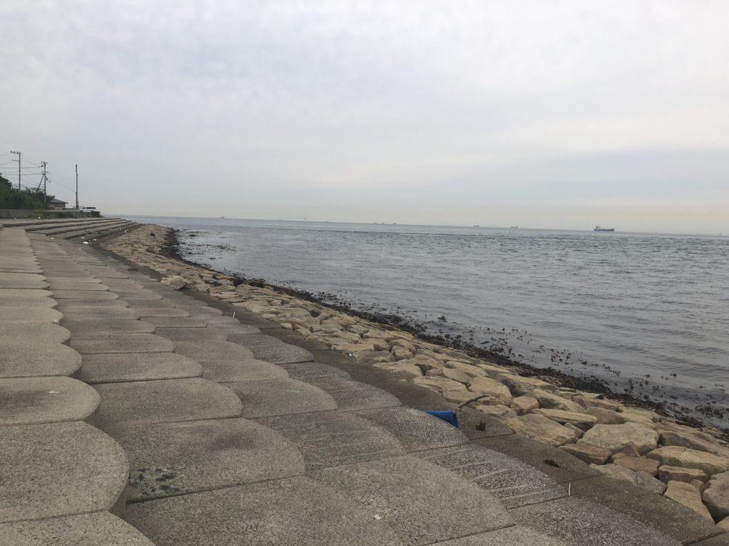 野島江崎中央部