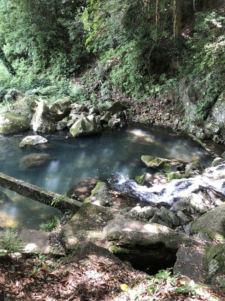 鮎屋の滝周辺