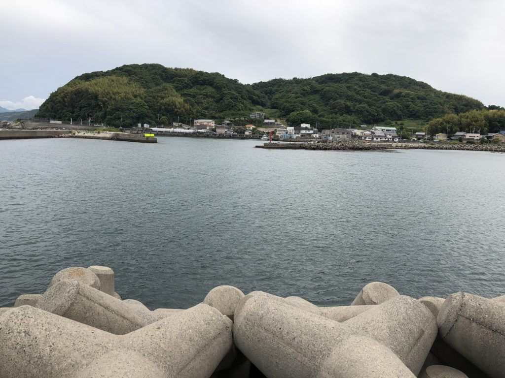 塩田新島南向き内側
