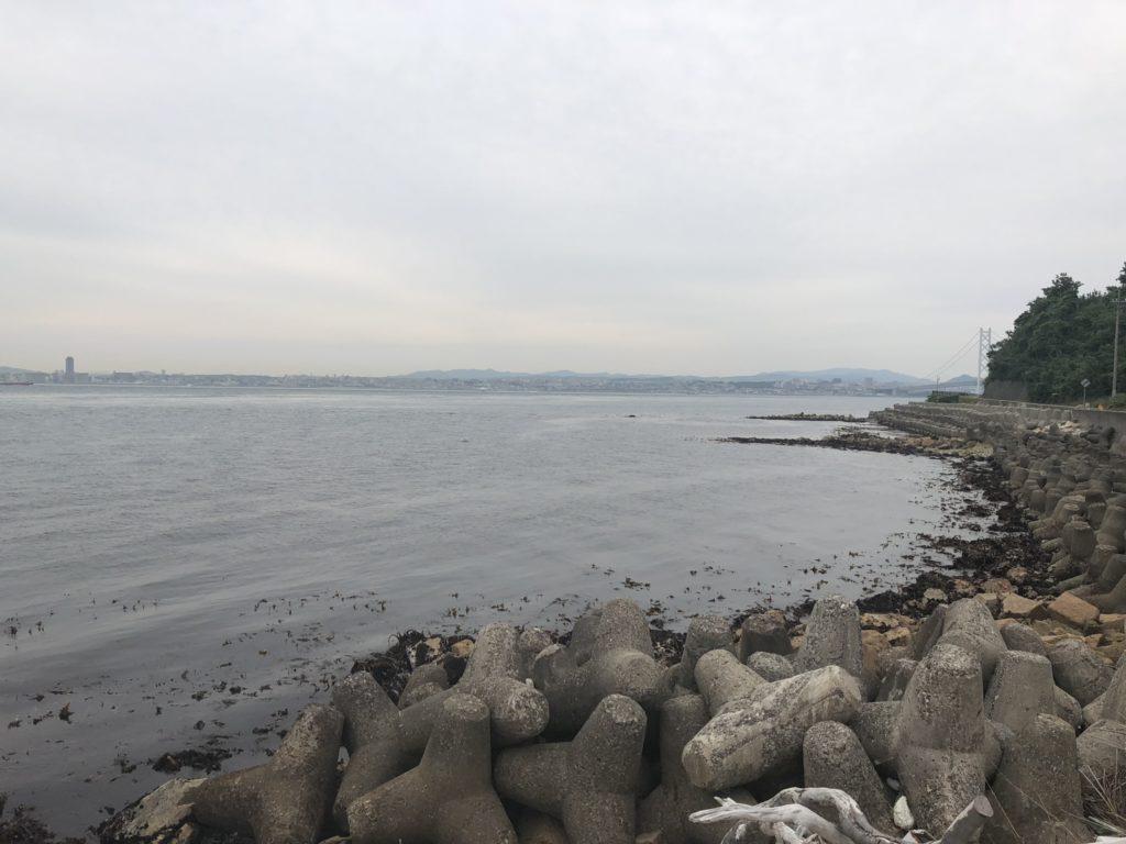 野島江崎北側
