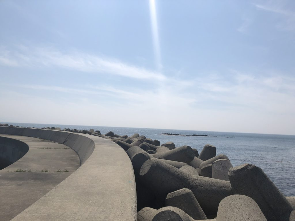 丸山新港のカーブ